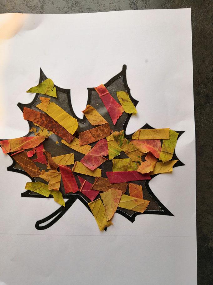 Vitrail-dautomne-ou-attrape-soleil-de-feuilles-mortes-2