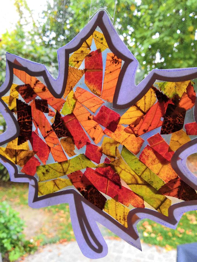 Vitrail-dautomne-ou-attrape-soleil-de-feuilles-mortes-6