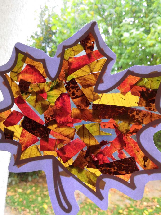 Vitrail-dautomne-ou-attrape-soleil-de-feuilles-mortes-7