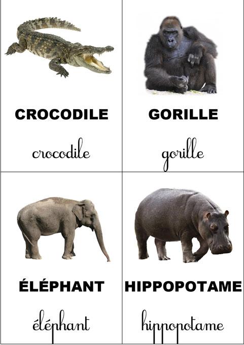 carte-nomenclature-animaux-sauvage-mini-papo-1