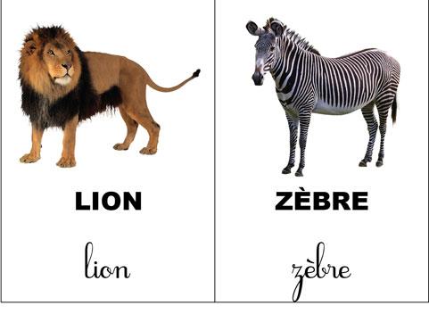carte-nomenclature-animaux-sauvage-mini-papo-2