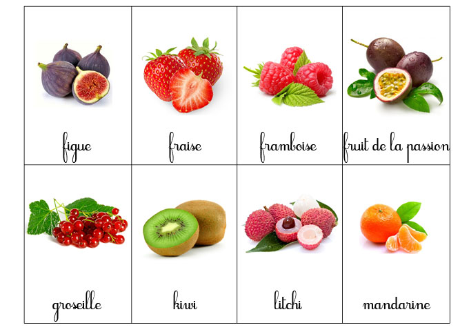 carte-nomenclature-fruit-2