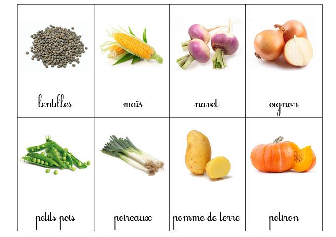 carte-nomenclature-legumes-3