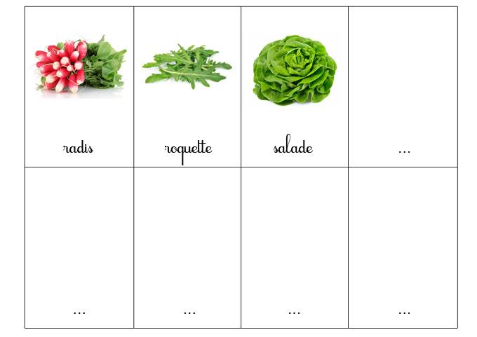 carte-nomenclature-legumes-4