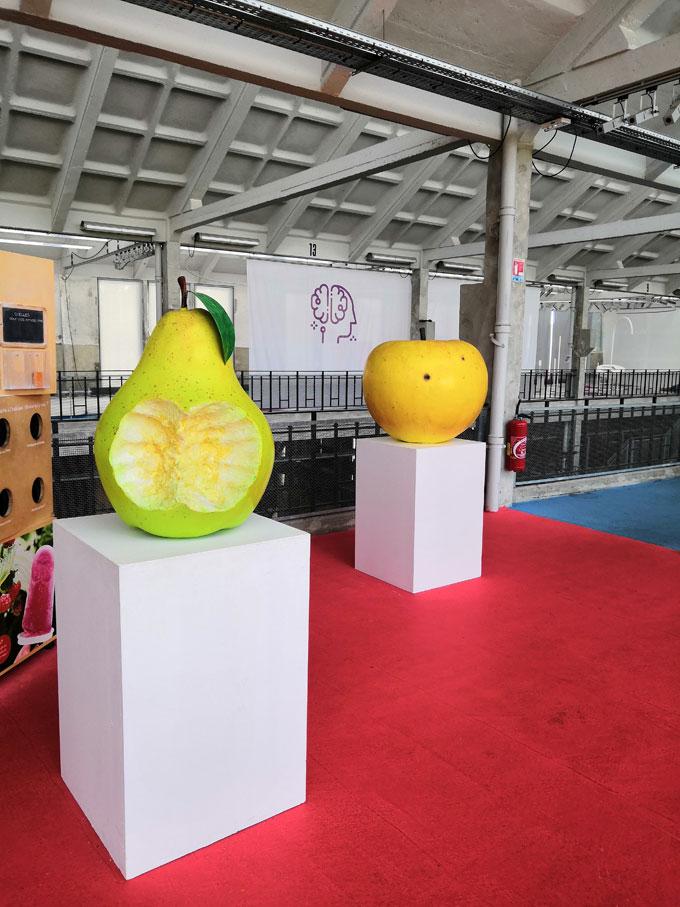 cite-nature-fruits-legumes-4