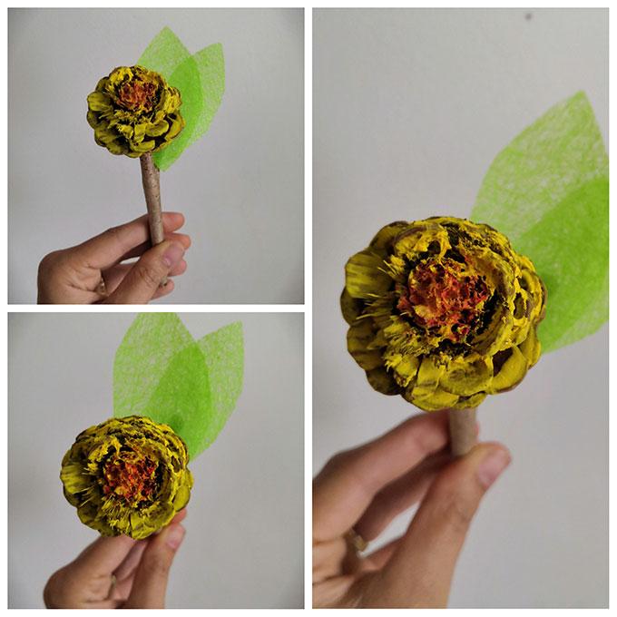 fleur-pomme-de-pin-jaune