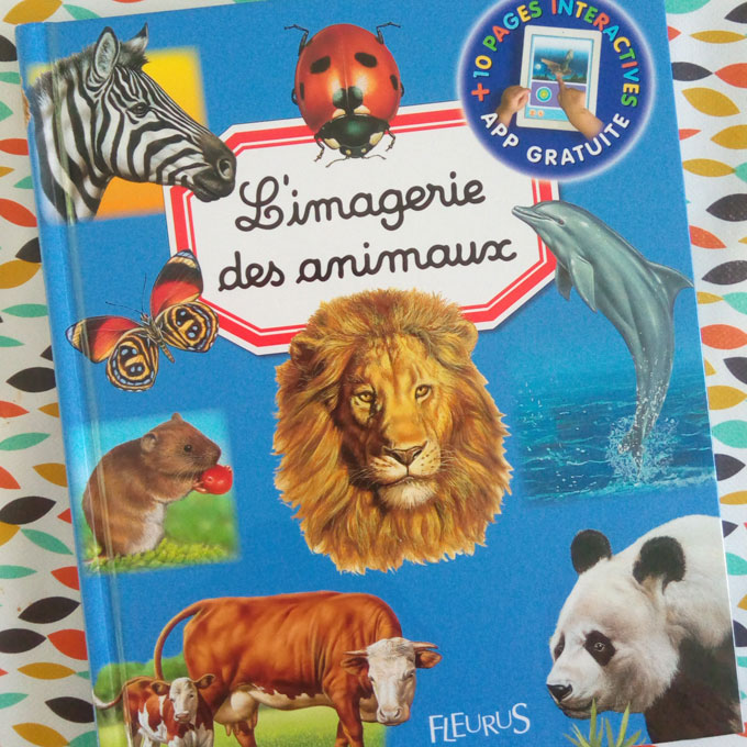 imagerie animaux