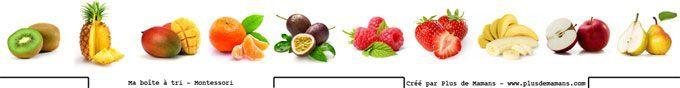 images-boite-de-tri-fruits