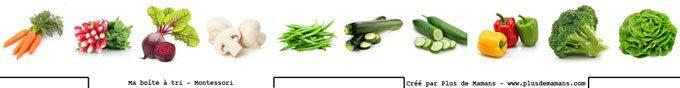images-boite-de-tri-legumes