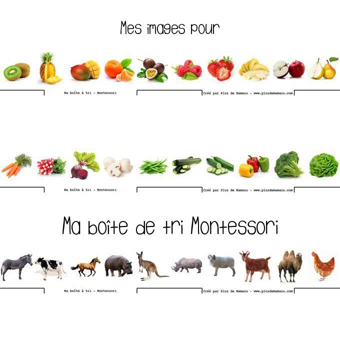Des cartes pour votre boîte de tri d images Montessori   À télécharger   à  imprimer   9ef2f821f770