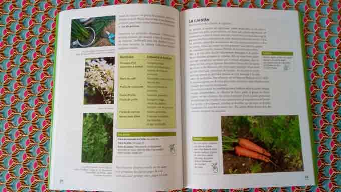 jardinage-avec-enfants-1