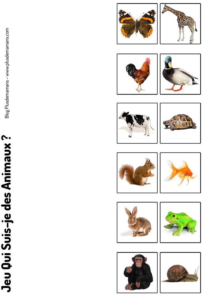 jeu-qui-suis-animaux-3