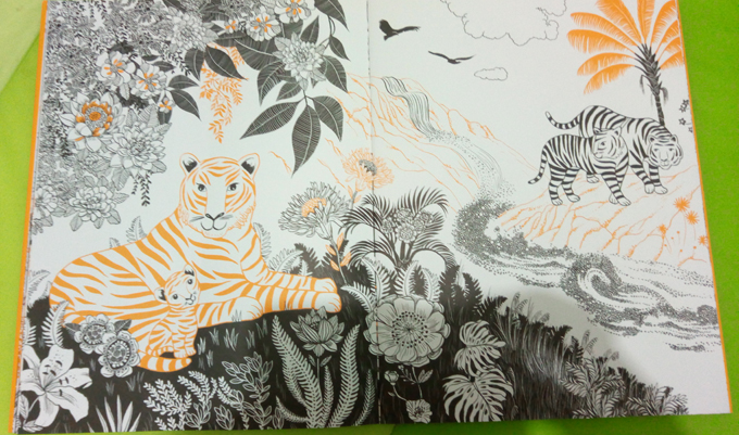 jungles-2