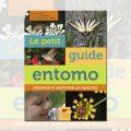 petit guide entomo