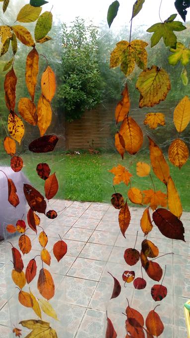 rideau-feuilles-automne-2