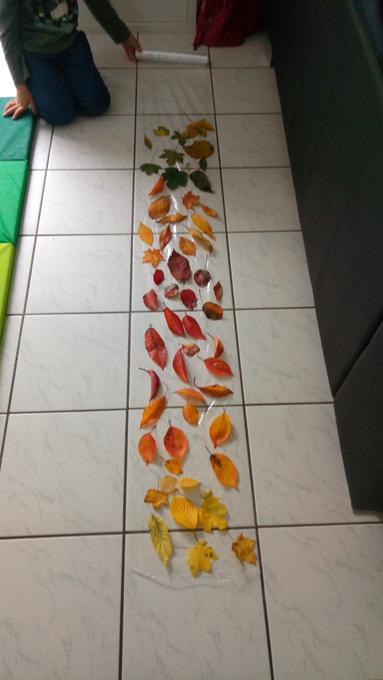 rideau-feuilles-automne-4